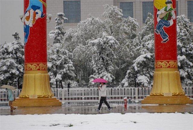 sneg_pekin