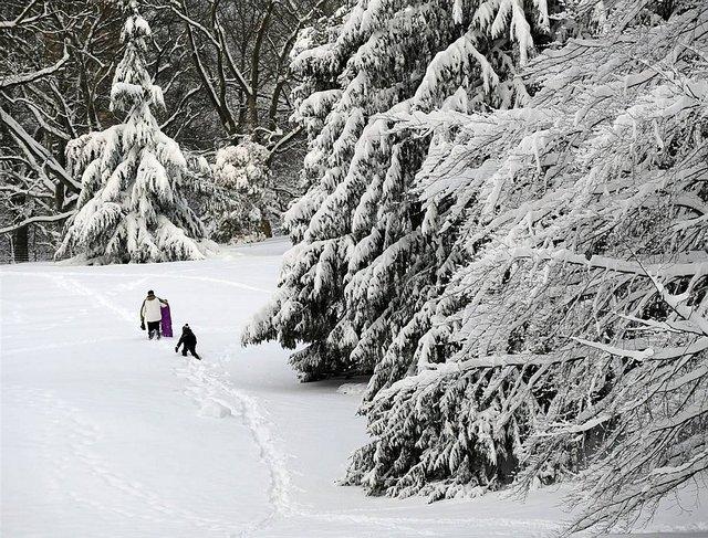 snegopad_usa15