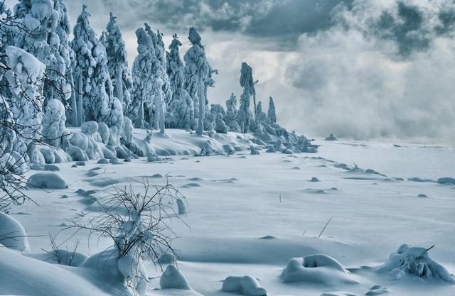 izmenenie_klimata