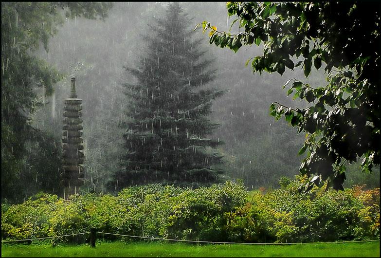 letnyaya-pogoda-v-yaponii-otlichaetsya-bolshim-kolichestvom-osadkov-vysokoy-vlazhnostyu-i-temperaturoy-tayfunami--3-308