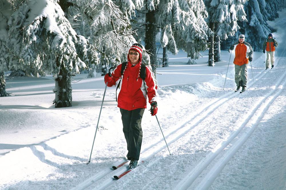 Лыжники_в_тюрингенском_лесу