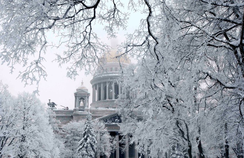 St. Isaac's Cathedral is seen amid trees covered with snow in St. Petersburg, January 11, 2010. REUTERS/Alexander Demianchuk (RUSSIA - Tags: ENVIRONMENT RELIGION IMAGES OF THE DAY)