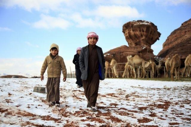 01_saudovskuyu-araviyu-neozhidanno-zavalilo-snegom