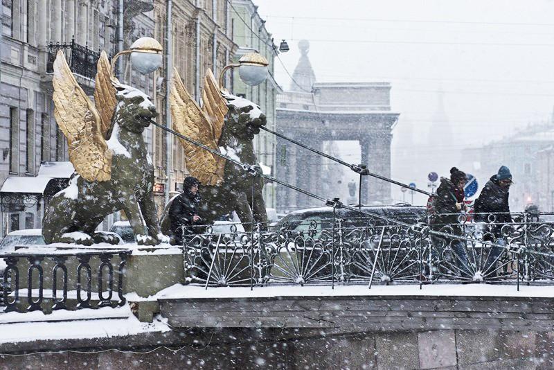 Фото налимов зимой